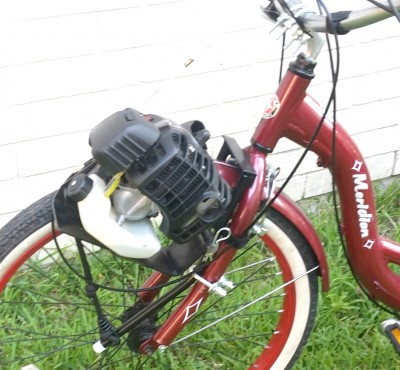 Motor Kit For Adult Trike
